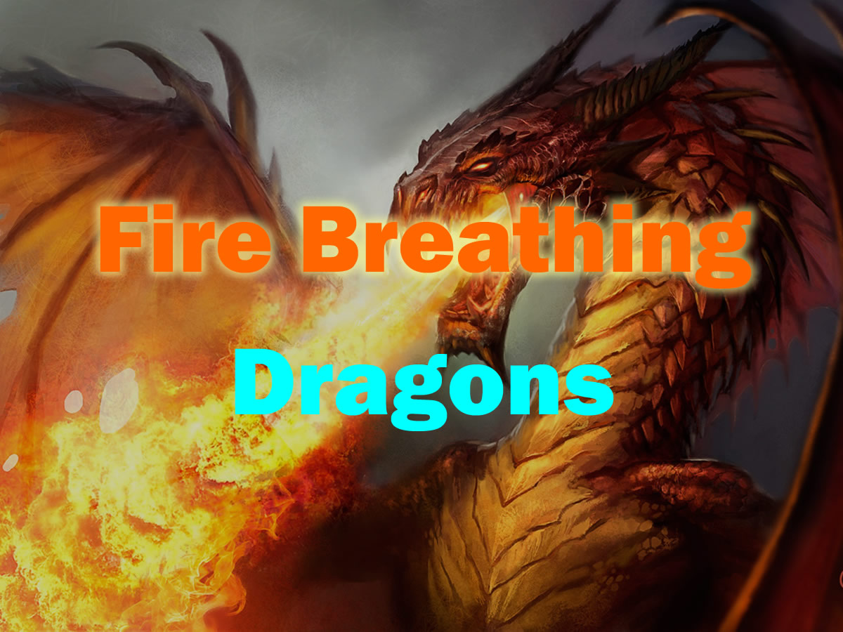 fire breathing dragons
